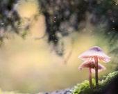 Mushroom Fairy Tale Wall Decor, Magical Fairytale Woodland Photography, Soft Lemon Yellow Autumn Forest, Nursery Wall Art