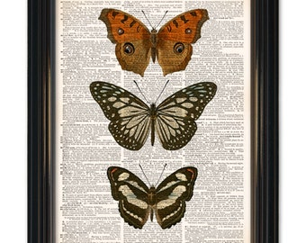Butterfly dictionary art prints Beautiful Butterflies upcycled vintage dictionary page print-8x10 inch in size.