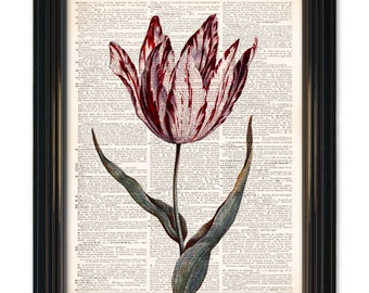 Flower wall art on dictionary page.Tulip art vintage dictionary art print 8x10 inches. Buy any 3 get 1 Free or Buy 4 get 2 FREE!