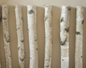Popular items for white birch logs on etsy for White birch log crafts
