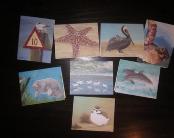 Note Cards Pack of 8