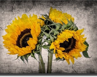 A Picture of Sunflowers Made on Stretched Canvas, Wall Art Decor Ready to Hang.