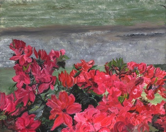 Azaleas in Little River - Giclee Print