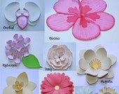 3D Flowers Vector Art SVG Files