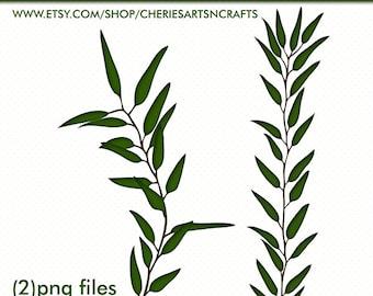 Eucalyptus Branches Clip Art | PNG Foliage Clipart | Foliage Graphics | Branches, Leaves, Eucalyptus Leaves | Digital Scrapbooking Elements