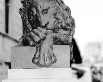 Stone Lion Architectural Wall Art Home Decor Black and White - Sad Lion - Photographic Wall Art by Sarah McTernen