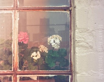 Flower Photography, 8x12 Print, Abandoned Photography, Dreamy Photography, Urban Exploration, Urban Art, Detroit Art, Rustic Decor, Pink