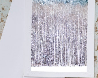 Winter Photo Notecards, Set of Five Holiday Greeting Cards, Birch Trees in Snow, Nature Note Cards