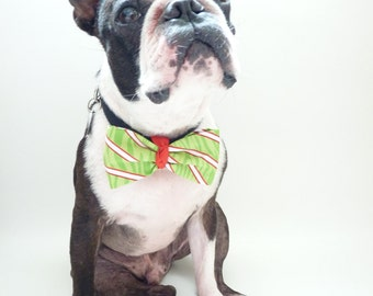 """Christmas Pet tie The """"BUBBABOW"""" Tie for Happy Pets in Peppermint Green, Red and White"""