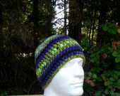 mens hat, boys beanie, crochet hat, black, blue, apple green, gold, mauve, vegan friendly, hats for men, multi-colored, youth/adult 2743