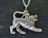 Sterling Silver Chimera Pendant on a Sterling Silver Chain.
