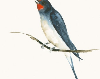 Watercolor Bird Art Print Swallow