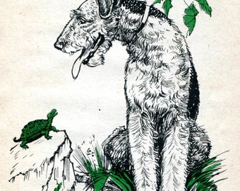 Welsh Terrier Dog Print Illustration Diana Thorne 1940s Dog Art Vintage Children's Book Picture