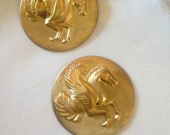 Pegasus Medallion ( 2 pc)