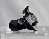 Blue Azurite Crystal - Display Specimen - Has a little Malachite - Milpillas Mexico - DanPickedMinerals