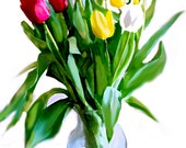 A Great Pick of Tulips