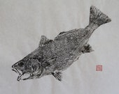 CROAKER / Red Fish (Ishi Mochi) Original Gyotaku - traditional Japanese fish art by dowaito (2)