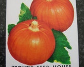Vintage seed packets, scrapbooking and decoupage supplies, vintage artwork, botanical art