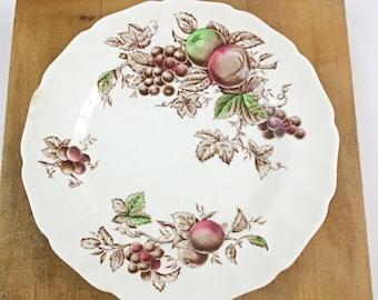 "Johnson Bros. Harvest Time 10"" Dinner Plate / Brown and Mutli-Color / Ironstone Dinnerware"