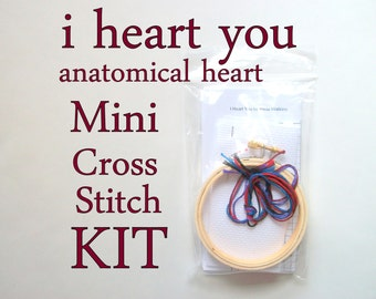 Cross Stitch Kit -- I anatomical heart you beginner-intermediate cross stitch kit