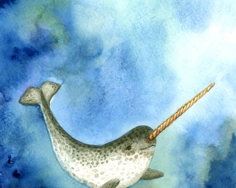 Narwhal (Monodon monoceros) watercolor painting