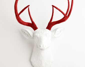Fake Deer Head - The Grover - White W/ Red Antlers Resin Deer Head Mount - Stag Resin by White Faux Taxidermy Animal Head Wall Decor