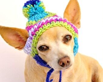 Jazz Stripe Dog Hat - Pet Hat - Cat Hat - Dog Beanie - Photo Prop - Hand Crochet - Made to Order