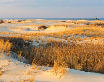 Cape Henlopen Delaware Beach Dunes, Blue And Gold Art, East Coast Mid Atlantic Lighthouse, Lewes Fine Art Photography, 8x12 Print Wall Art