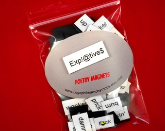 Expletives Poetry Magnet Set (Mature) - Refrigerator Poetry Word Magnets Curse Words Bad Words Profane Words Profanity