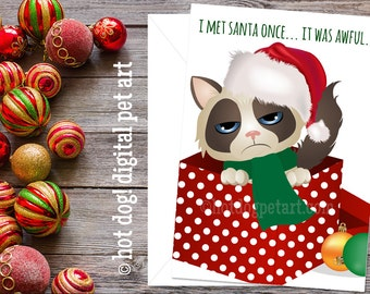 Funny Cat Christmas Card - I Met Santa Once It Was Awful