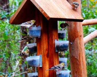 Attract beautiful songbirds with this unique finch bird feeder and make backyard bird watching more exciting!  Cedar wood, made in the USA.
