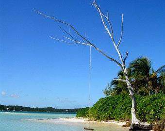 Photography, Bahamas, Beach, Hopetown Swing over Torquoise Sea, Blue Sky, Green Palms, Fine Art Print, Home Decor, 5x7, 8x10, 11x14, Beach