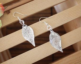 Silver Leaf Earrings, Evergreen Leaf, Real Leaf Earrings, Sterling Silver, Silver Leaves, Organic Gift, Silver Evergreen, Nature, LESM130