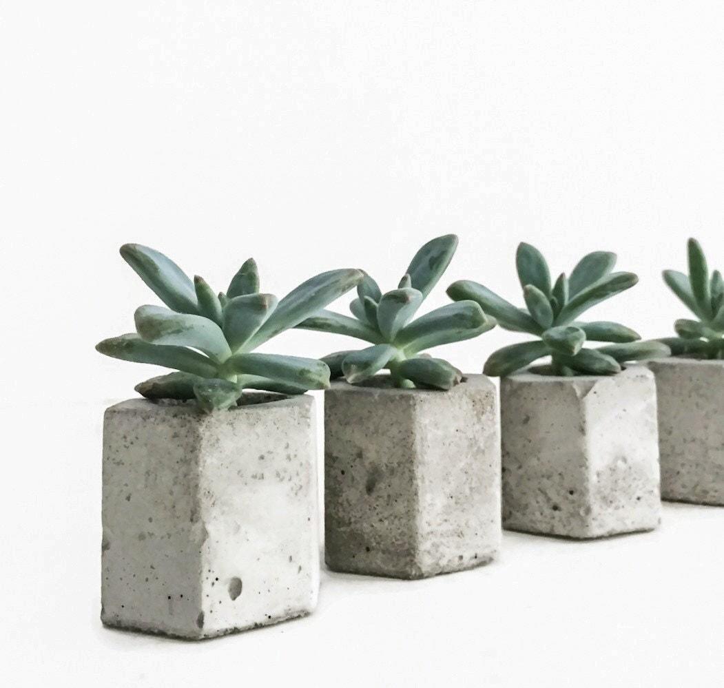 Set of 5 concrete hex micro planters succulent planter Concrete planters