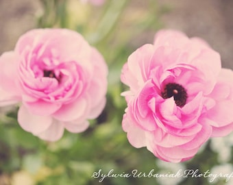 Flower  Photography nature photography dreamy photography spring decor pink green pastel ethereal wall art  Fine Art Photography Print