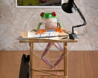 Designer, Architect at Work, Graphic Design, A Real Frog Sitting at a Drafting Table, Artist