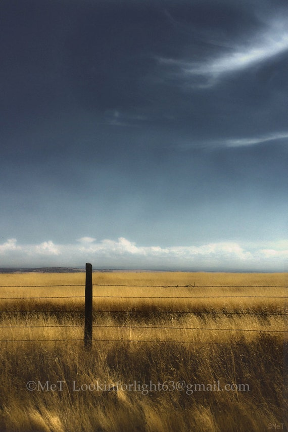 Dreamy Landscape Photo Art, Blue Sky Golden Field Photo, Deep Space, Golden Wheatfield art, California Landscape, Blue Sky and Clouds Photo