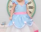CINDERELLA dress blue and pink  tutu dress Princess dress from Lover Dovers handmade costume Practical princess dress