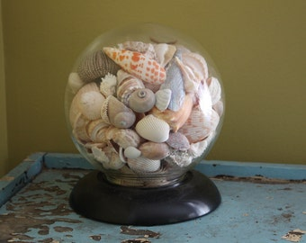 Seashell Globe.