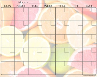 Colorful Citrus Fruit Dry Erase Monthly Calendar Fridge Magnet #3584