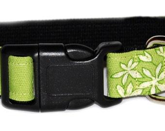 Spring Tea Dog Collar