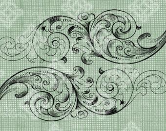Digital Download Swirls and Flourishes, digi stamp, Antique Illustration, Scroll pattern, Use for textile pattern, Digital Transfer