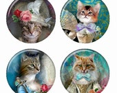 Dressed Up Cats Magnets or Pinback Buttons or Flatback Medallions Set of 4