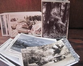 56 Vintage Black and White Postcards
