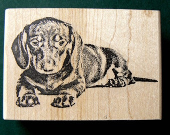 dachshund rubber stamp WM P16