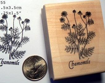 Chamomile rubber stamp WM P55