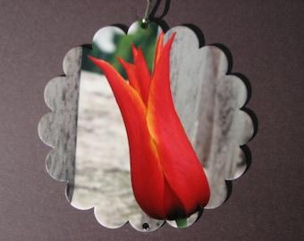 Tulip Garden Spinner