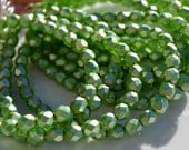 Spring Green Pearl Coat 6mm Faceted Fire Polish Round Beads   25