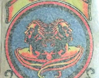 70s Vintage GEMNI Iron On, Tee Shirt Transfer, Hippie, Boho, Zodiac