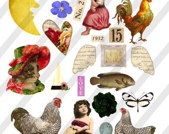 Digital Collage Sheet  Vintage Images Roosters Ephemera (Sheet no. O185) Png-Instant Download